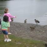 Kids feeding the ducks again...